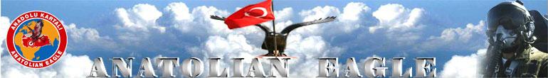 Anatolian Eagle